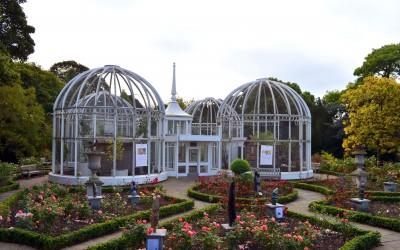 Birmingham Botanical Gardens 2