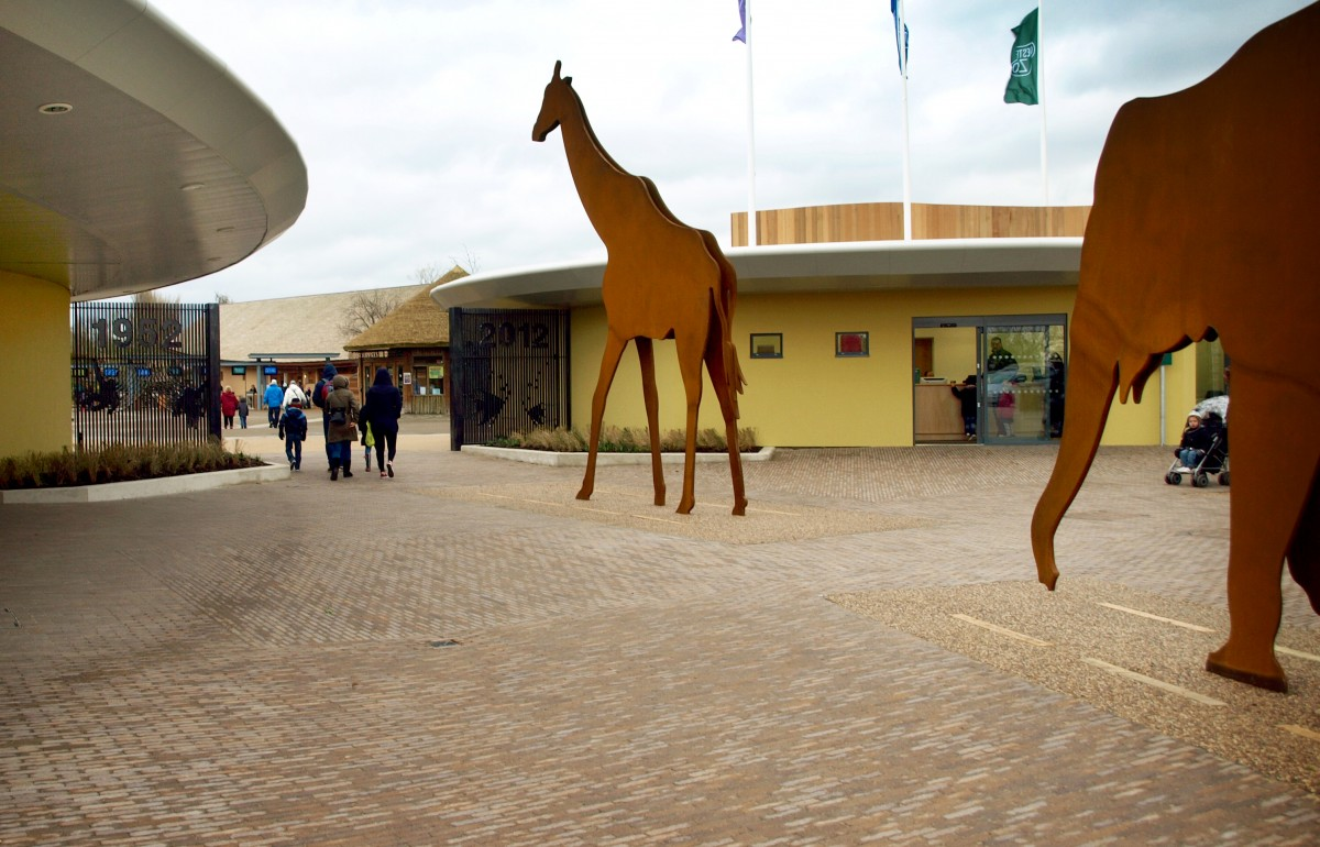 chester zoo address