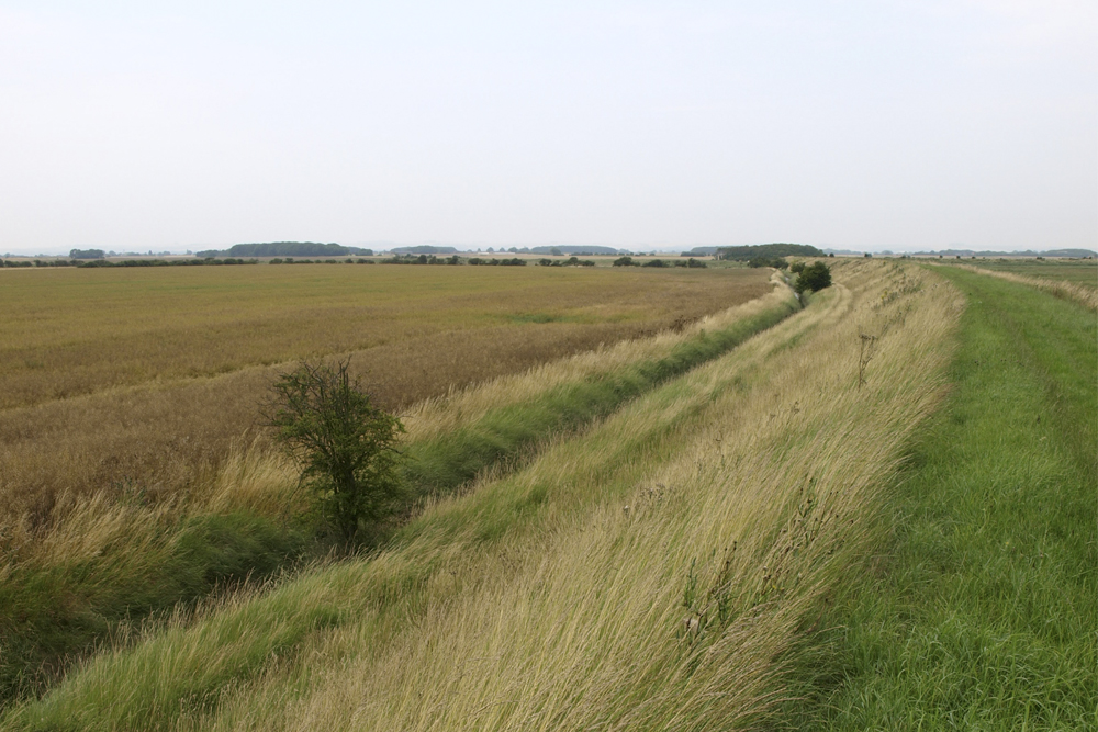 Donna Nook Managed Realignment